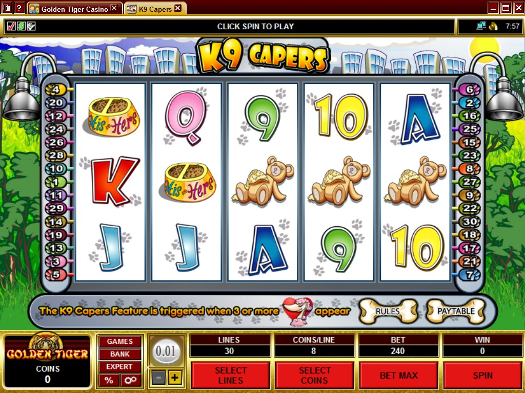 Casino flash golden tiger whiting ranch poker ride