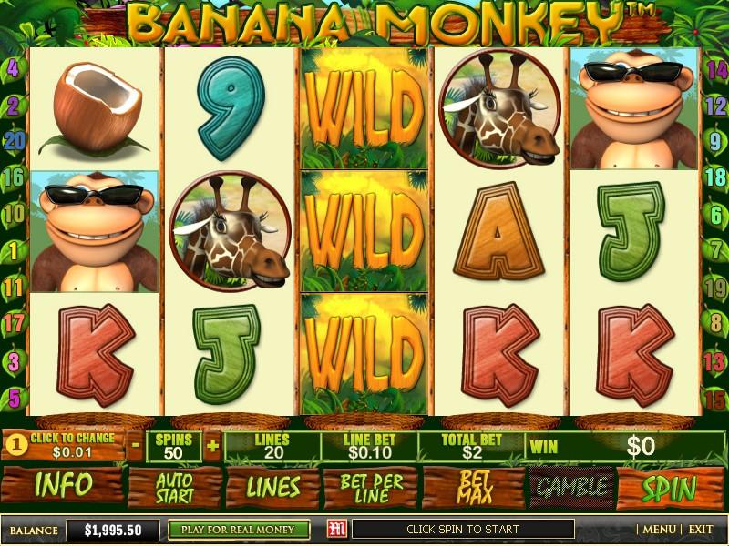 Casino myrsky kansainvalisette